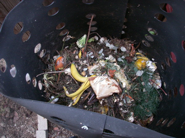 This is ours with fresh scraps thrown in